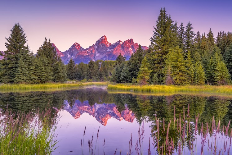 Visit Jackson Hole, Wyoming | Drive The Nation