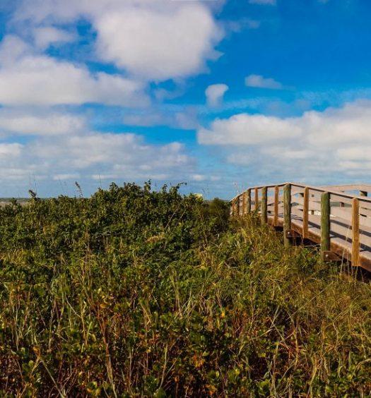A beautiful day on Indian Rocks Beach, Florida.