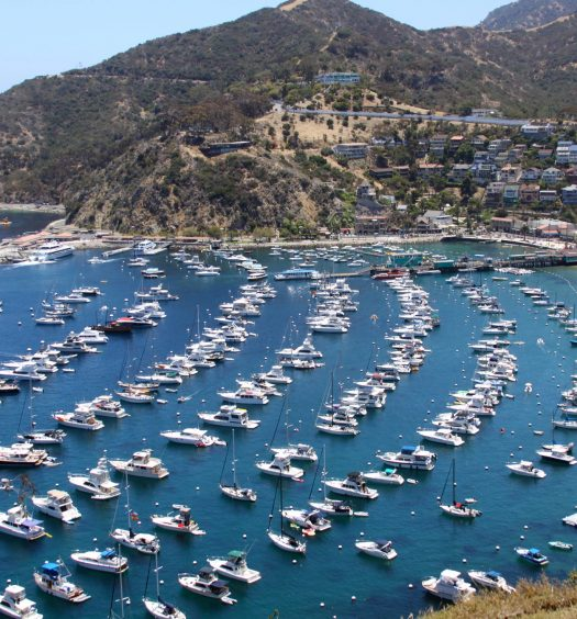 View of City and Bay of Avalon, California on Catalina island from above