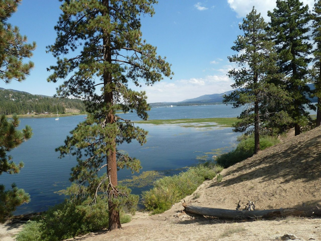 Big Bear Lake: Activities And Adventures For Kids