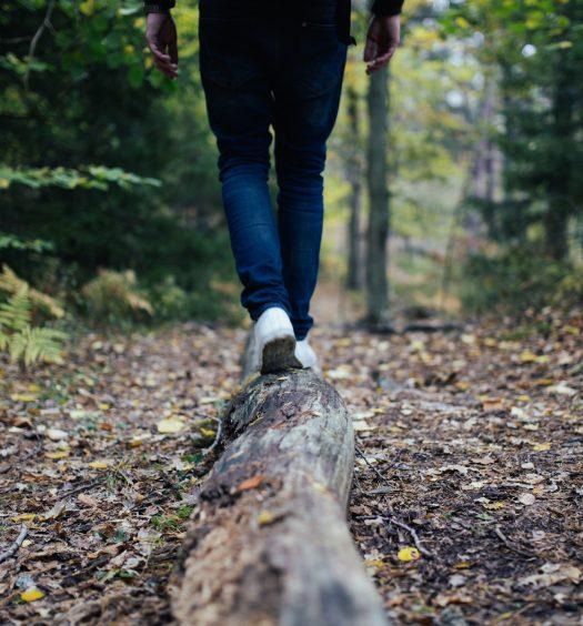 5 fall foliage hikes