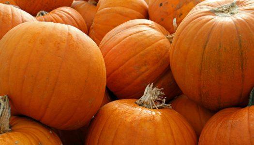 No-Knife Pumpkin Decorating Ideas