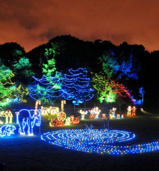 Rock city 39 s enchanted garden of lights drive the nation - Rock city enchanted garden of lights ...