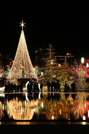 Tis the Season: The Nation's Best Neighborhood Light Displays