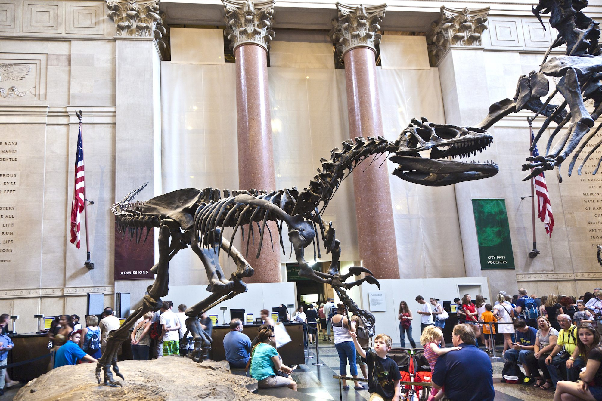 4 Amazing Things to Do the Next Time You Visit New York City