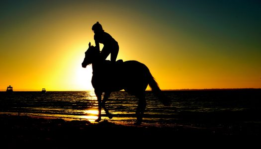 See America on These 5 Horseback Riding Tours