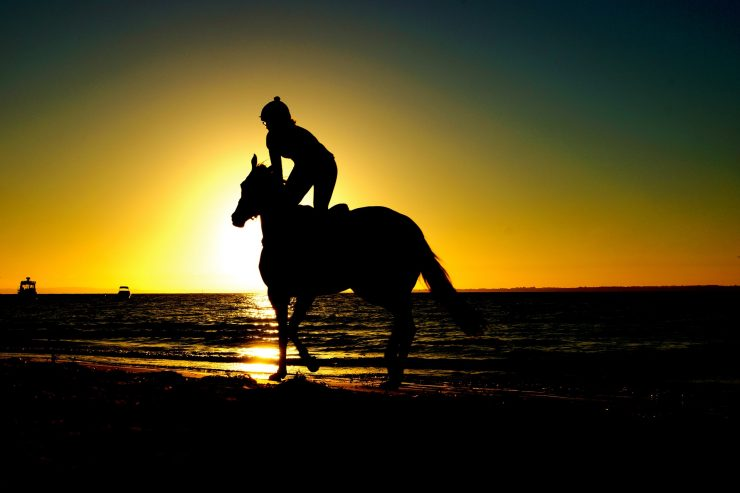 See America On These 5 Horseback Riding Tours Drive The