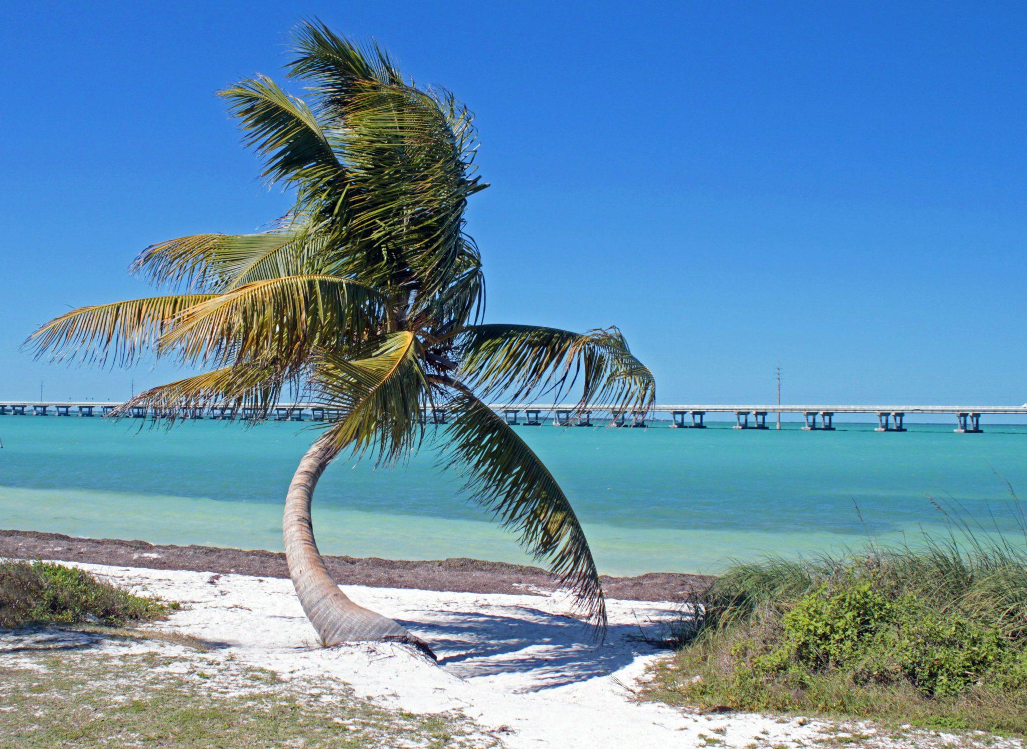 Road Trip Planner to the FL Keys