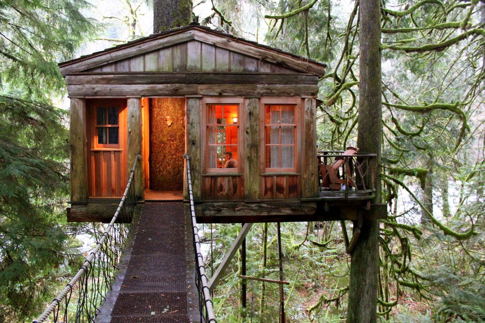 10 Epic Tree Houses You Can Stay In
