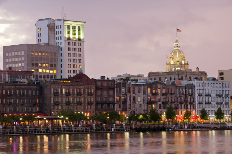 Savannah at Night