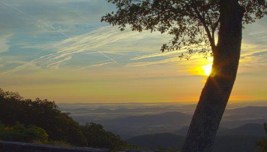 Best National Parks for Picnics