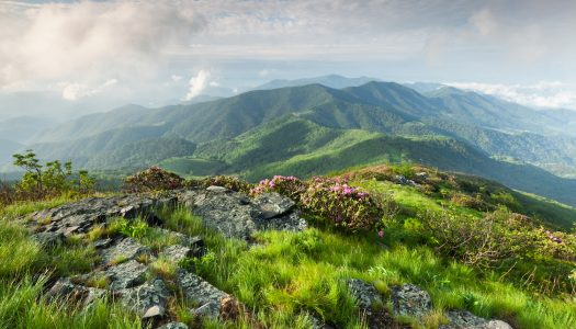 Scenic Drive: Roan Highlands