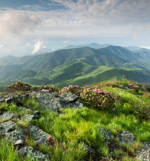 Blue Ridge Mountain Landscape