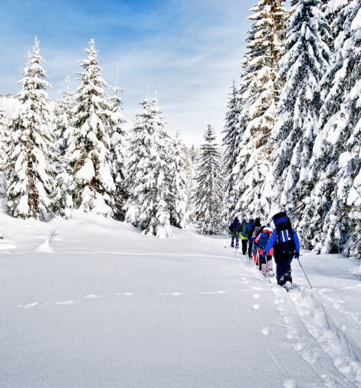 Group of snowshoe hikers