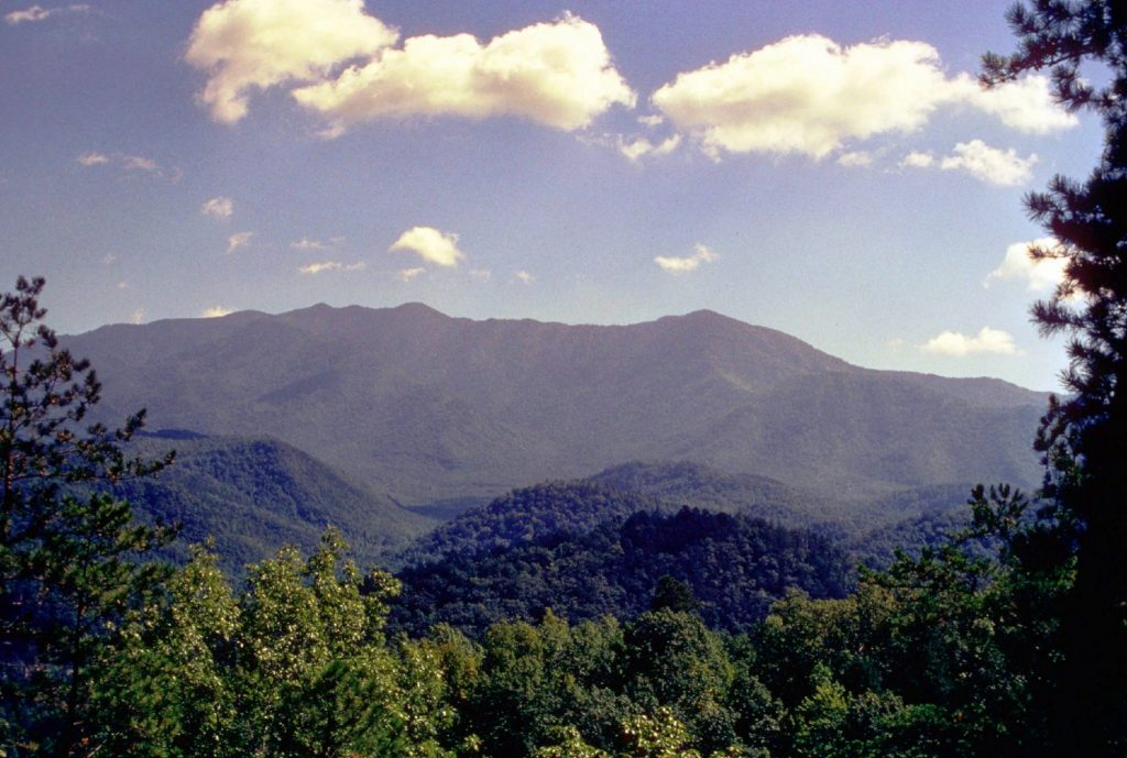 Via National Park Service
