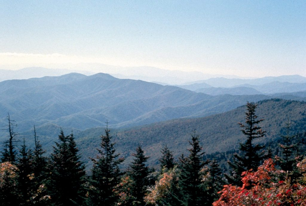 Smoky Mountain Scene
