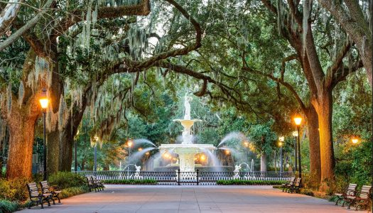 A Foodie's Guide to Savannah