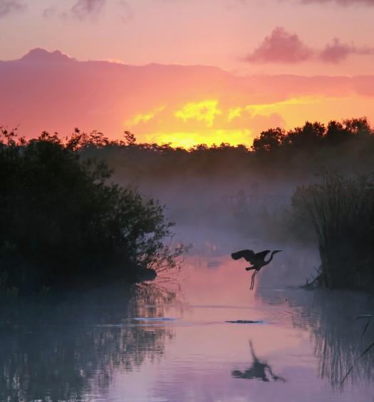Everglades National Park at Sunrise