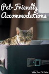 Finding Pet-Friendly Attractions and Accommodations