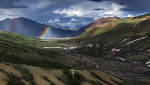 Mt. McKinley and the Beauty of Denali National Park