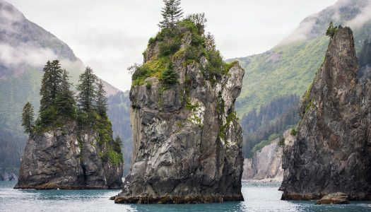 Glaciers and Orcas at Kenai Fjords National Park