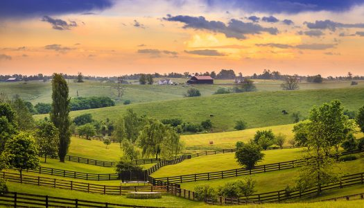 Top 5 Things to Do in Kentucky