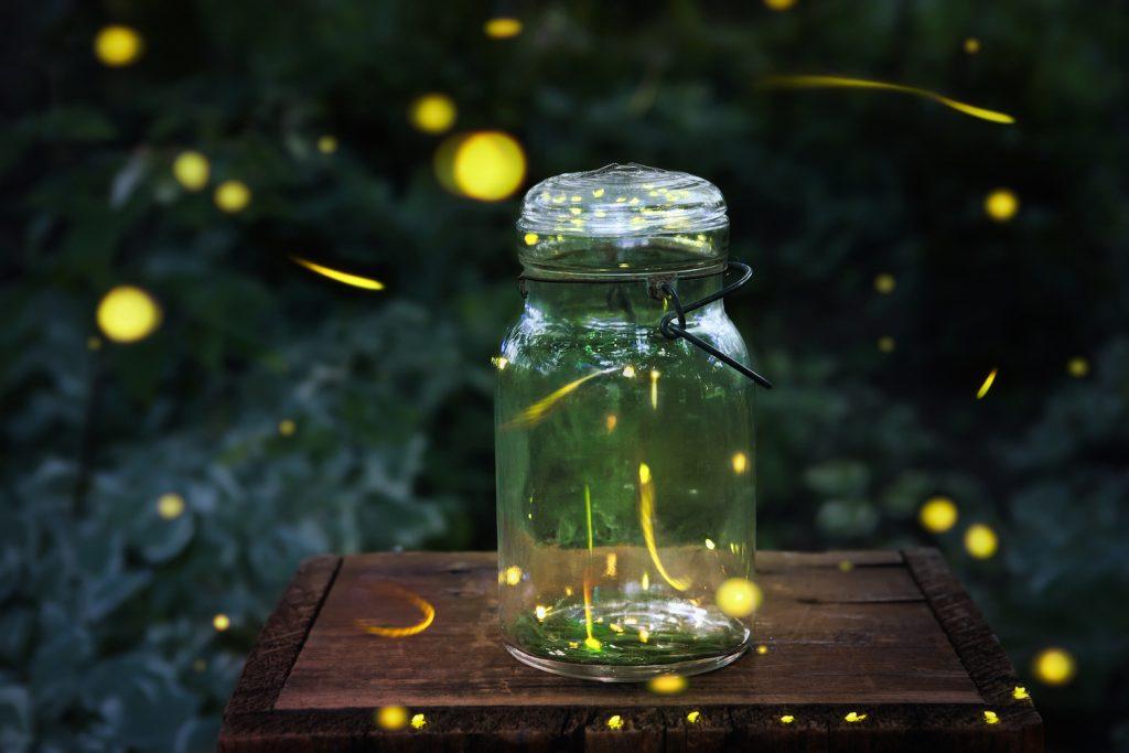 Fireflies in a jar. Long exposure