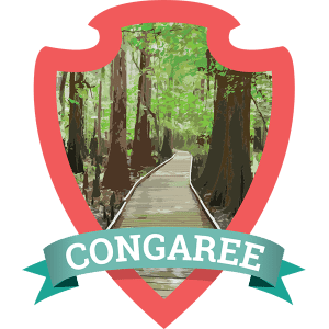 One of the newest National Parks, Congaree National Park in South Carolina is also one of the least crowded due to many not even knowing about it!