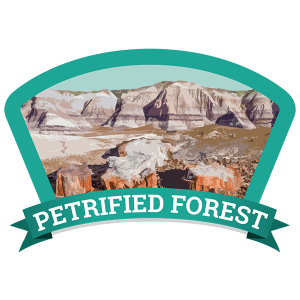 Petrified Forest Badge