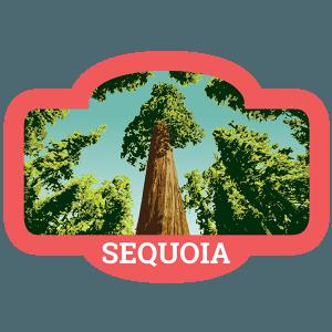 Sequoia Badge
