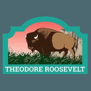 Theodore Roosevelt Badge
