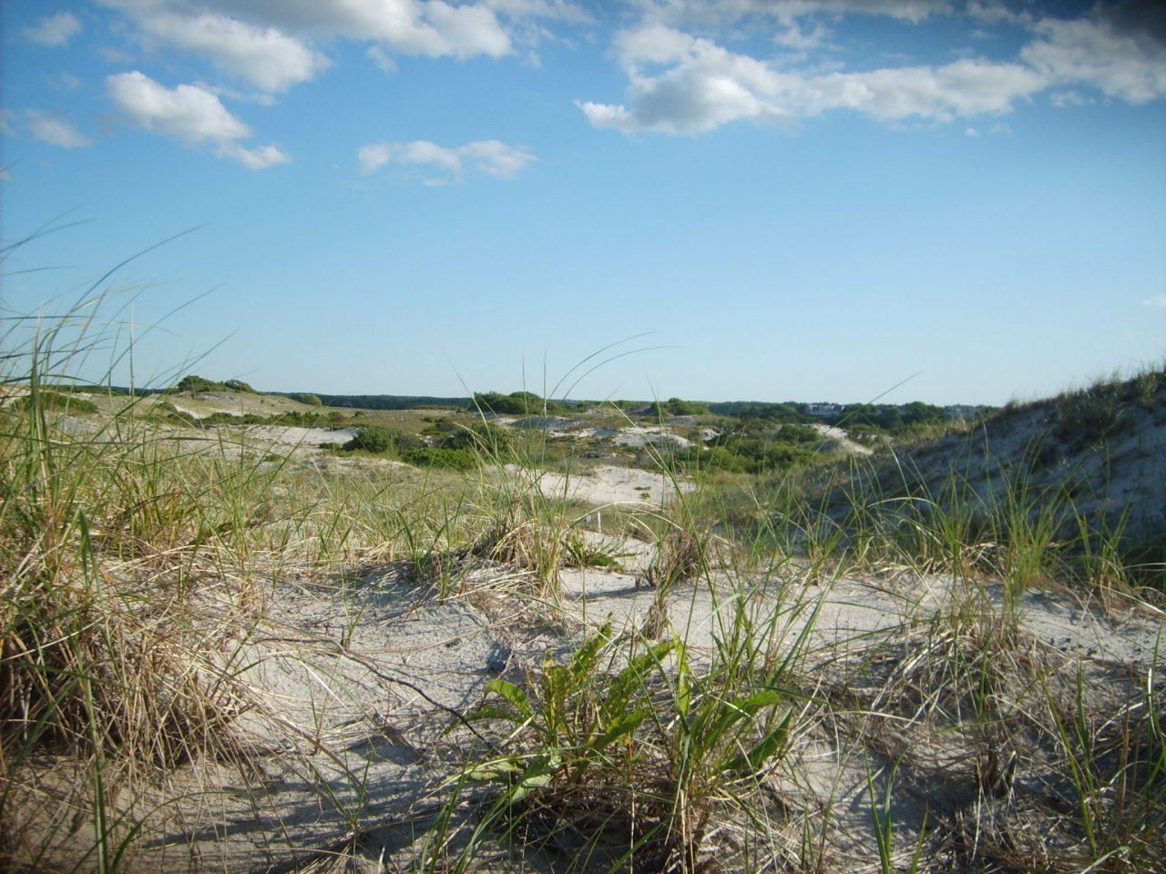 10 Top New England Beaches