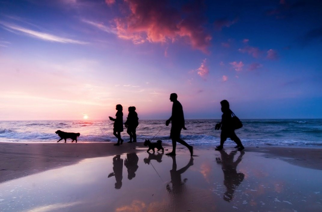 Family Walking the Beach at Sunset