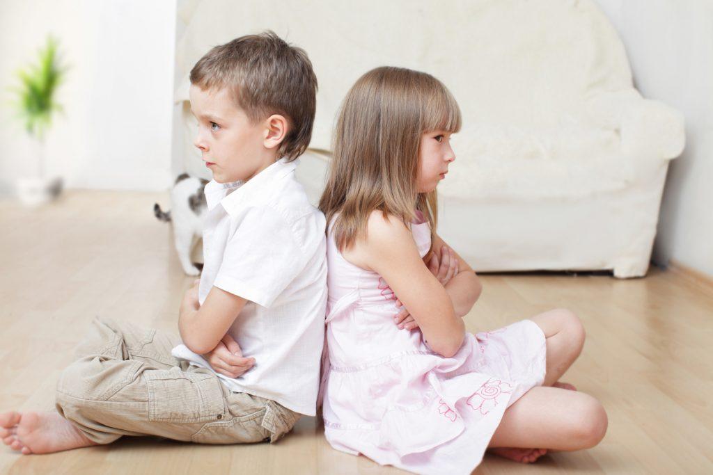 Sibling Fighting