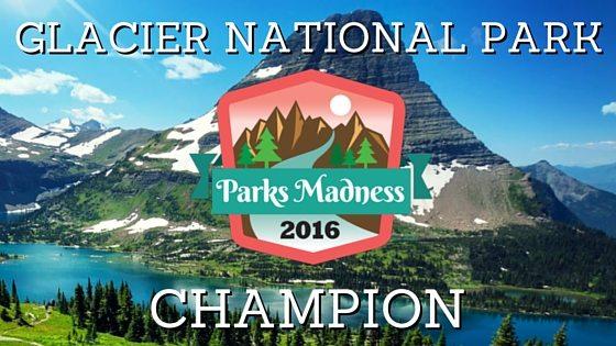 NPM Winner