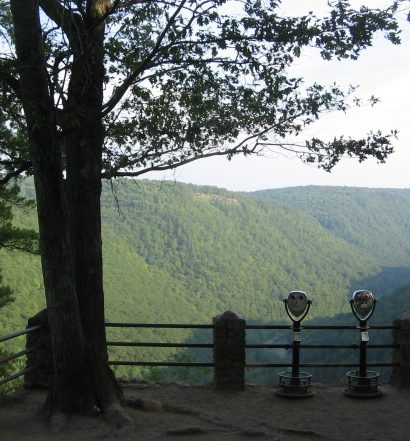 Colton Point State Park Overlook