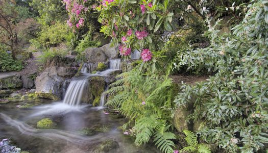 America's Most Serene Gardens