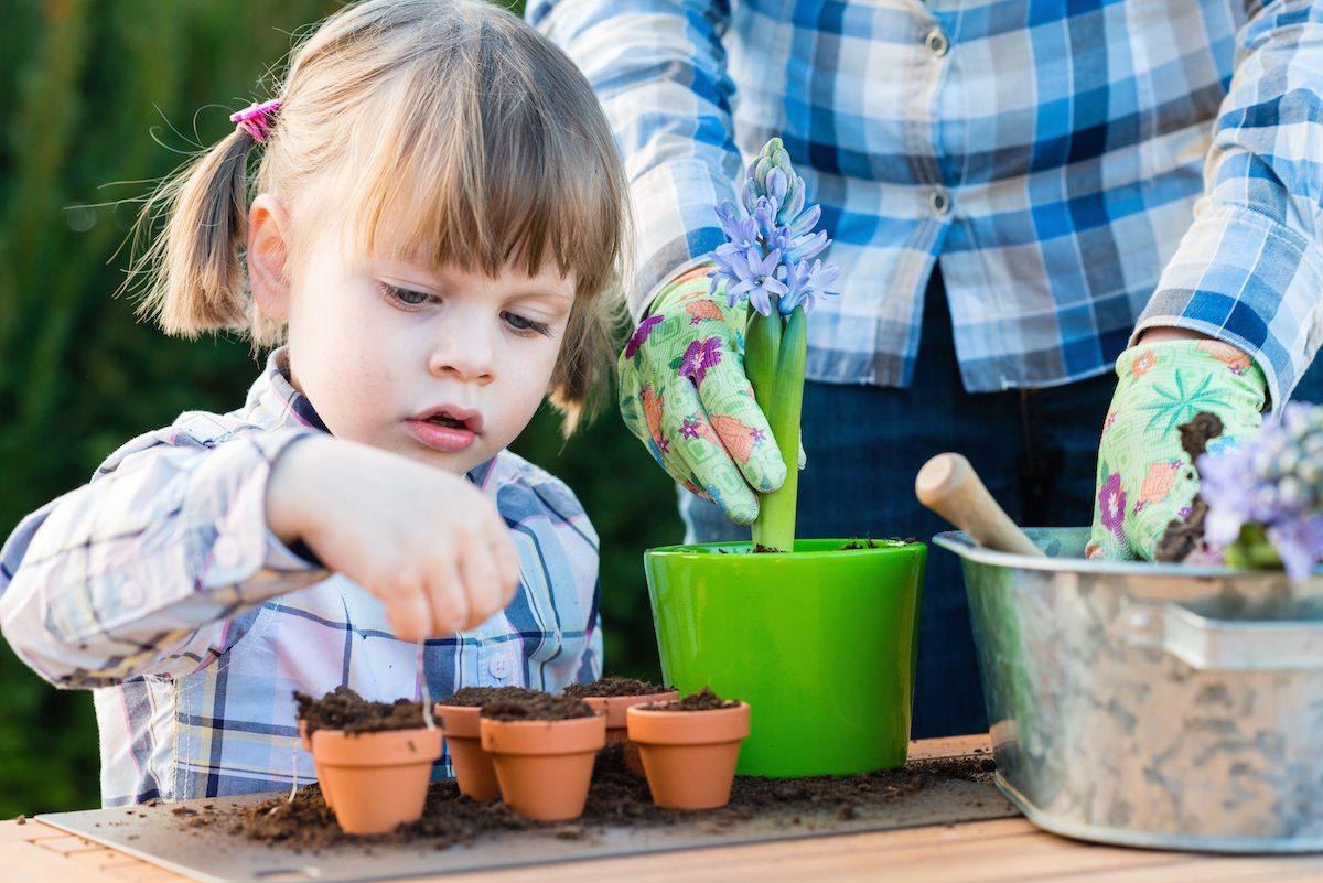 Gardening-planting