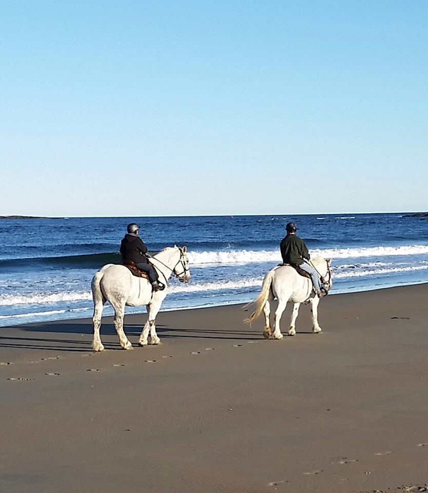 Popham Beach Horseback Riding