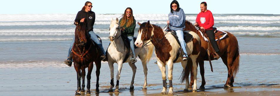 Oceano Dunes Preserve Horse Riding
