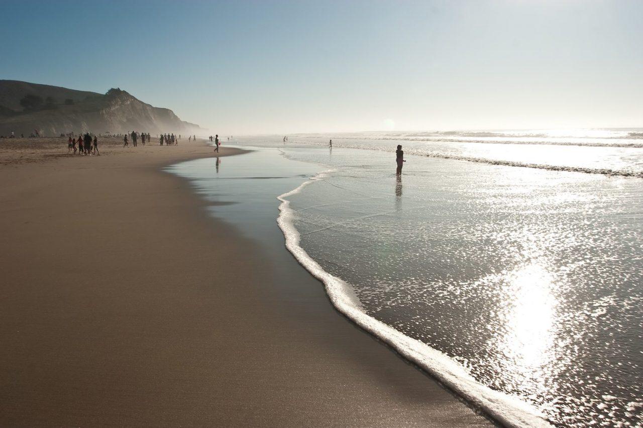San Gregorio Beach California