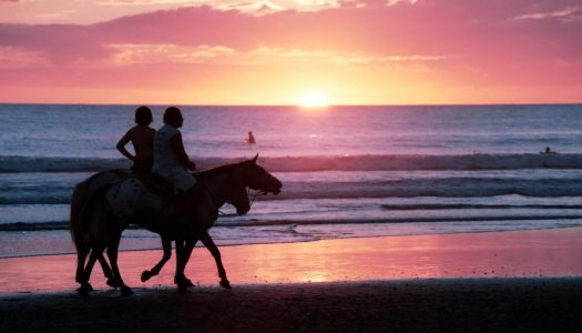 Top 5 Beaches for Horseback Riding