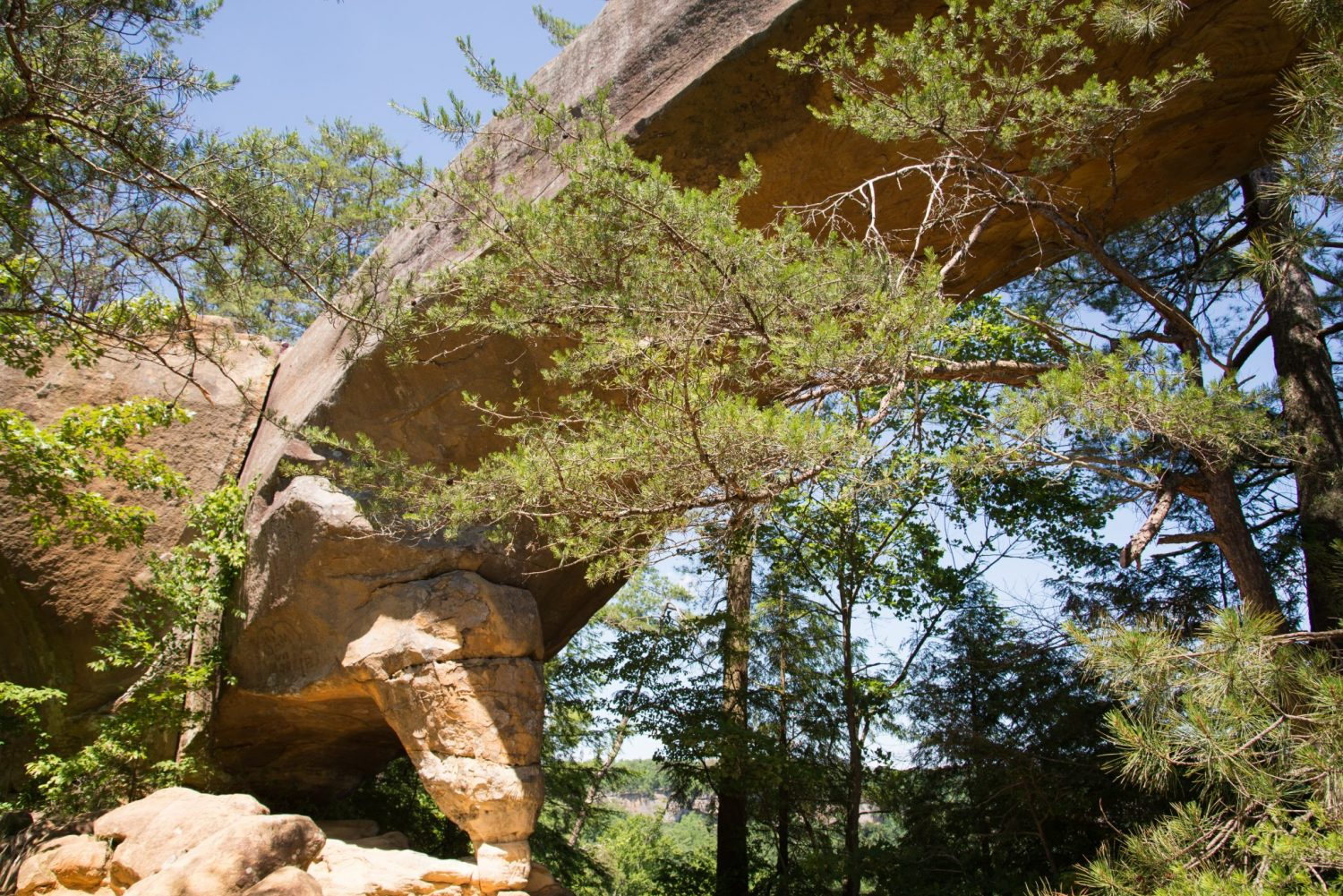Top 9 Natural Arches In The U S Drive The Nation
