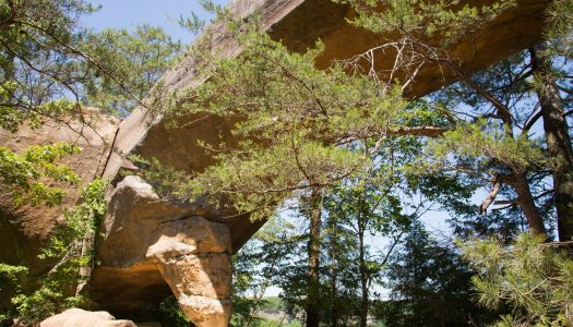 Top 9  Natural Arches in the U.S.