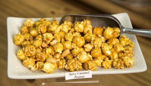 Best Gourmet Popcorn Shops in the US