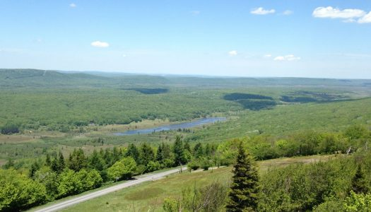 Canaan Valley National Wildlife Refuge