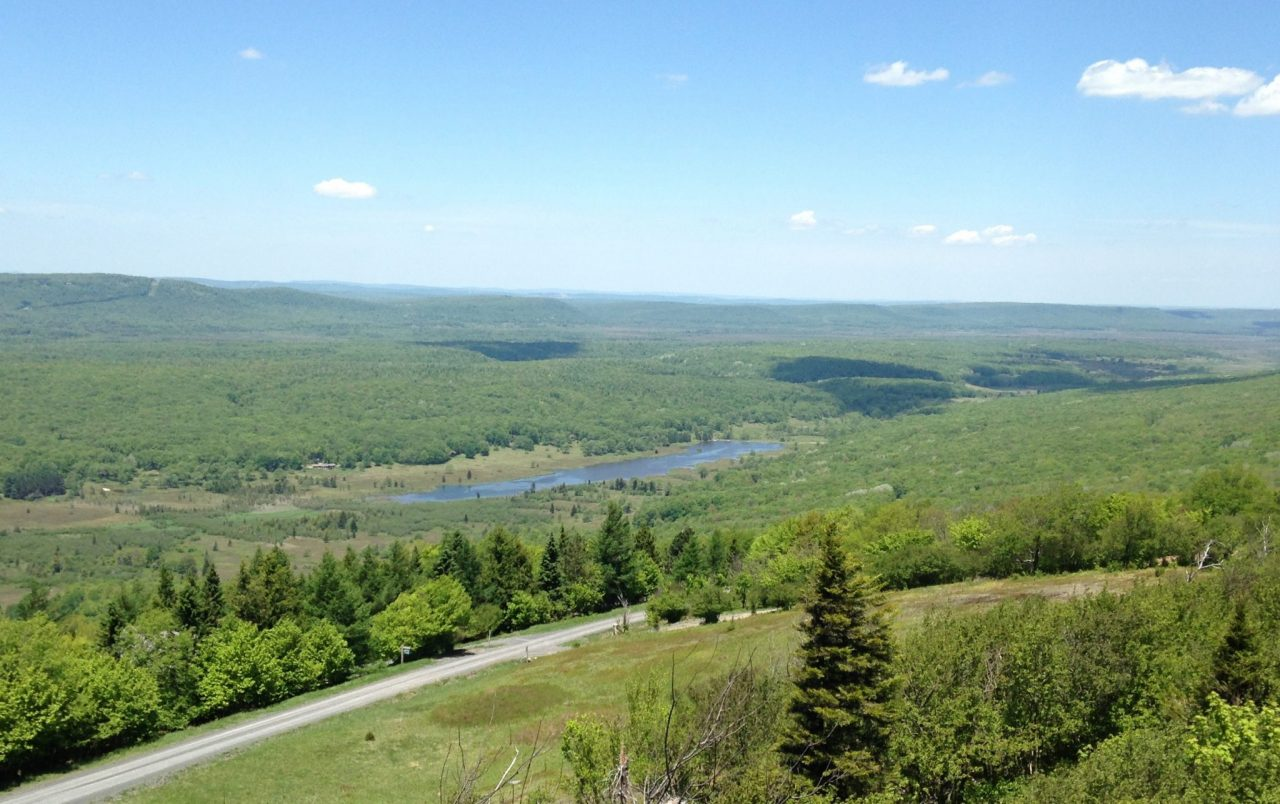 Canaan Valley National Wildlife Refuge Drive The Nation