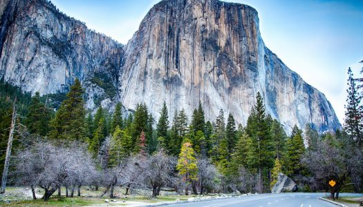 Visiting Yosemite in a Day