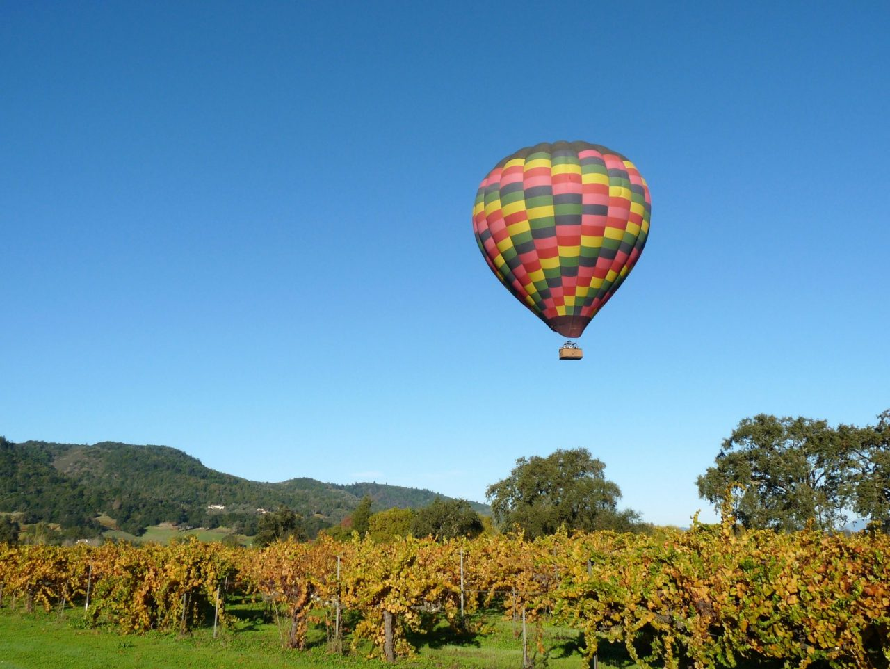 Hot Air balloon over Napa Valley Vineyards