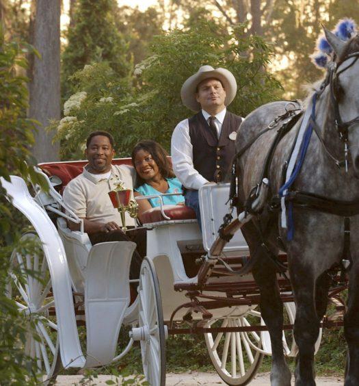 Disney Horse Drawn Carriage